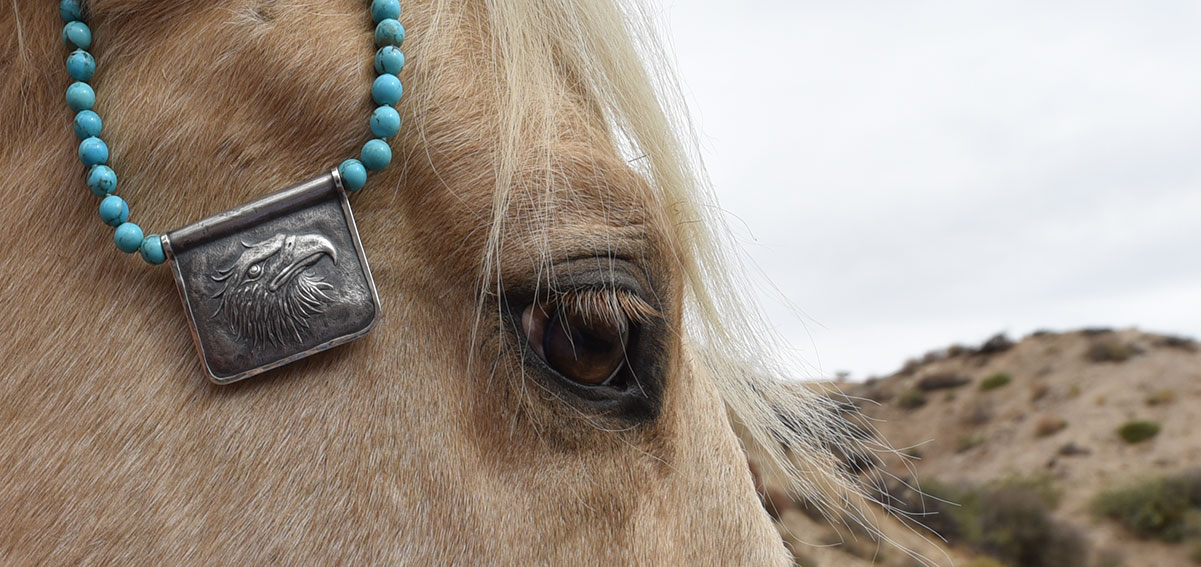 Arizona Round New Boulder turquoise combined with a 925 silver plaque with an American Eagle Head motif cast by Old World Masters in the Czech Republic, decorating the head of a palomino horse at Cottonwood Canyon Ranch in Morongo Valley, Mojave Desert.