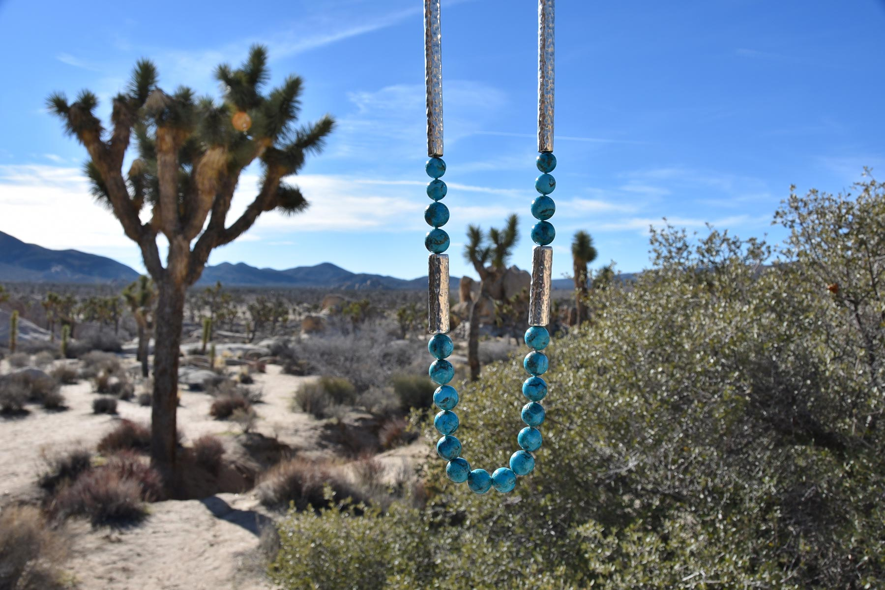 A necklace of Arizona Boulder turquoise rounds with 925 silver tubes hand-hammered by Old World craftsmen in Vicenza, Italy, hanging from a Joshua tree in Joshua Tree National Park, Mojave Desert, California. From the Silver Stones Collection by Kamila Kubelik.